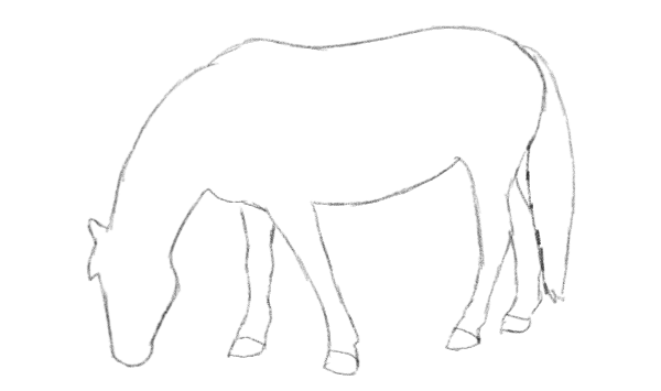 Easy Drawings Trace Horses
