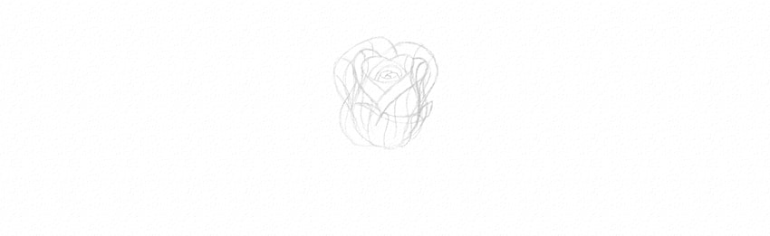 how to draw rose petals in perspective