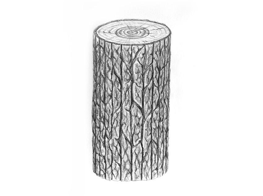 como desenhar um tronco de madeira