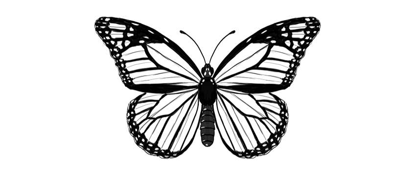 Sideways Butterfly Design