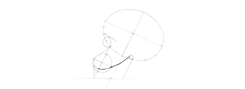 desenho curva da mandíbula