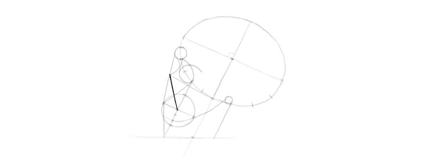 desenho de forma de nariz de caveira