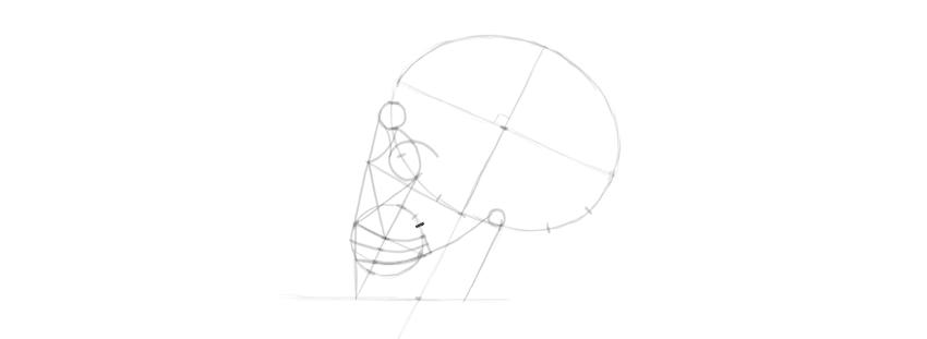 desenho detalhes do crânio