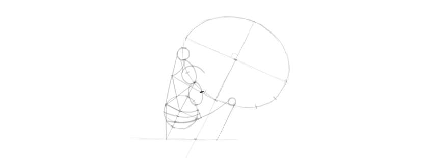 desenho osso da bochecha do crânio