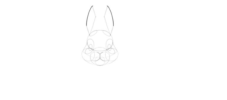 bunny ears done