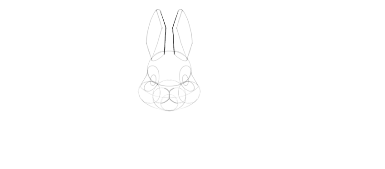 How To Draw A Cute Bunny Step By Step Www 101