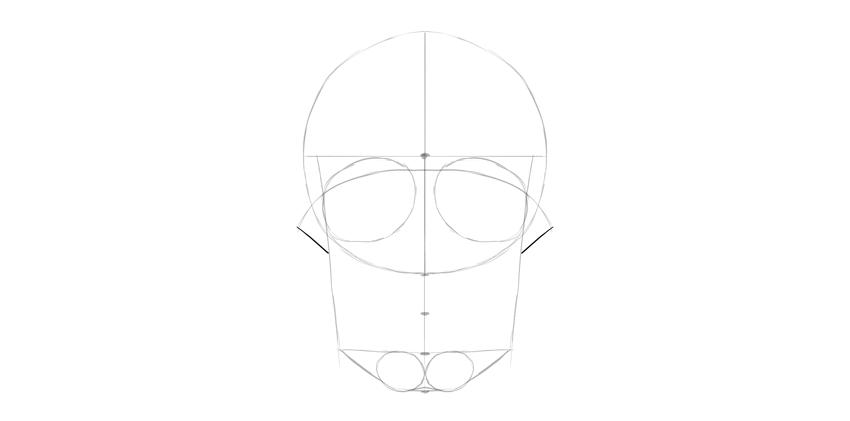 maçãs do rosto do crânio humano
