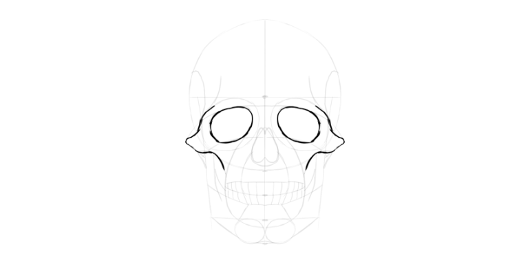 human skull eye socket outline