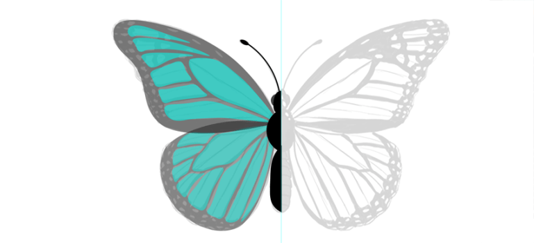 photoshop create butterfly wings