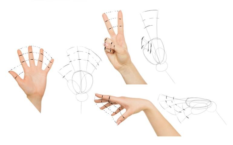 draw fingers as fan