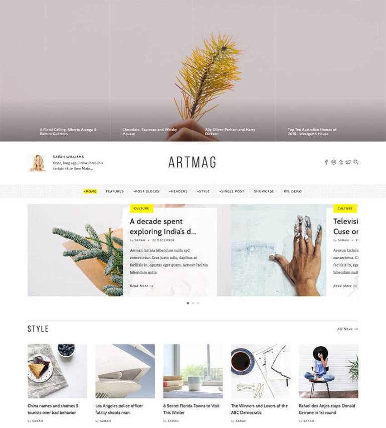 Artmag Clean WordPress Blog and Magazine Theme Design