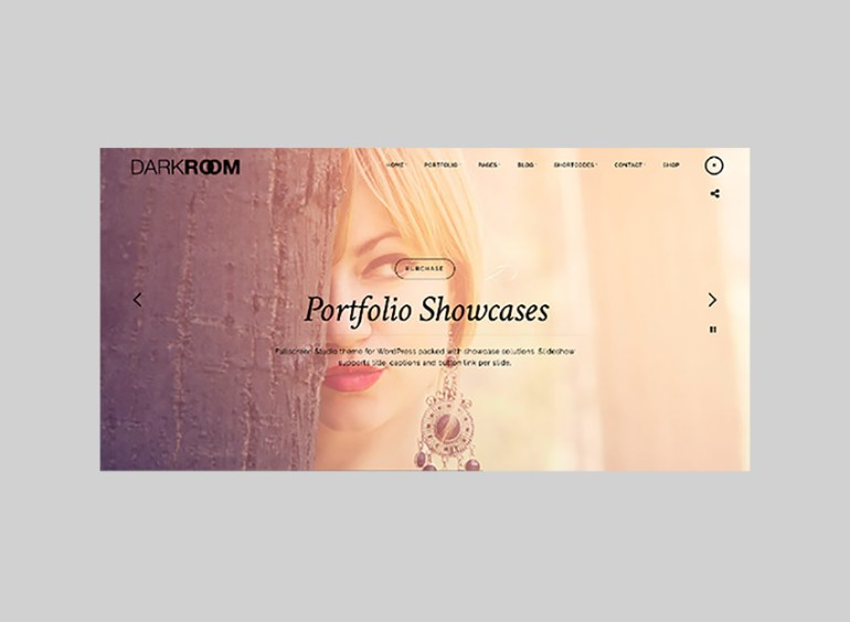 Darkroom Full-Screen WordPress theme