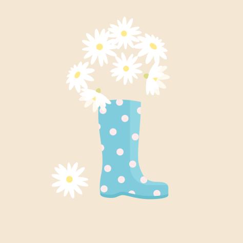 placing daisies