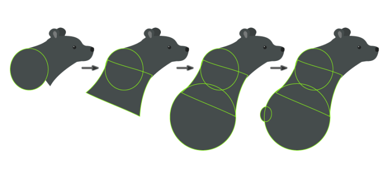 how to create the body and tail of the Bear
