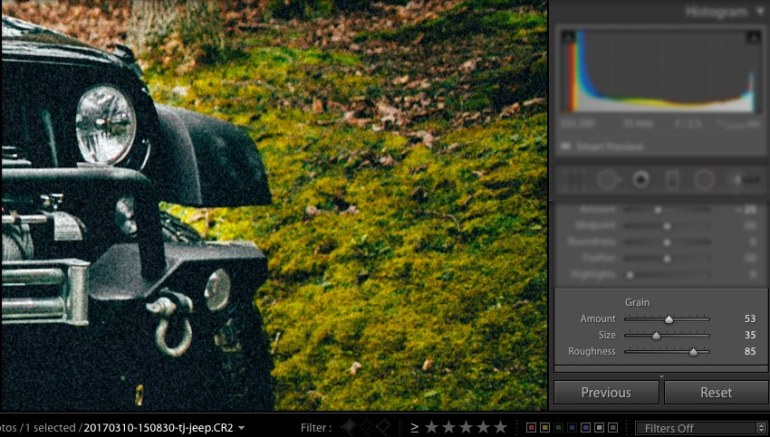 Grain Adjustment in Lightroom