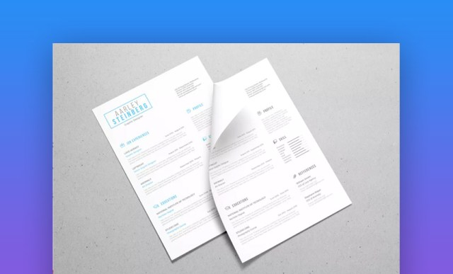 Resume minimalista 04