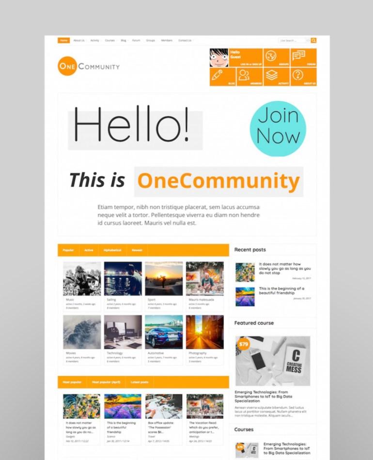 OneCommunity - BuddyPress Community e-Learning LMS Theme