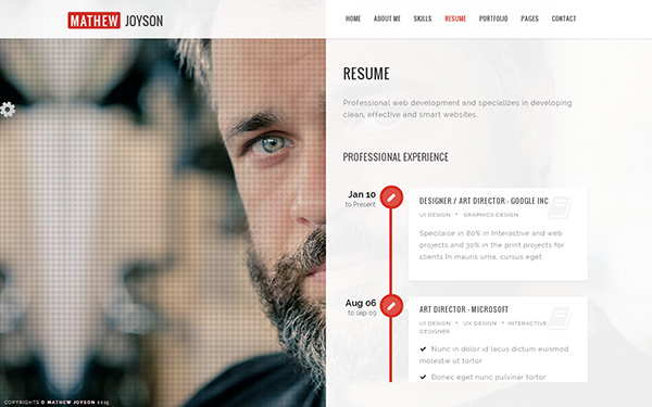 Slide online resume website theme