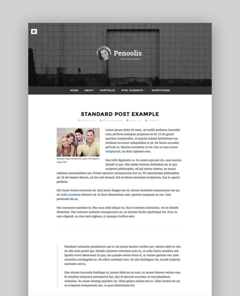 Penoolis Responsive WordPress Personal Blog Writer Theme