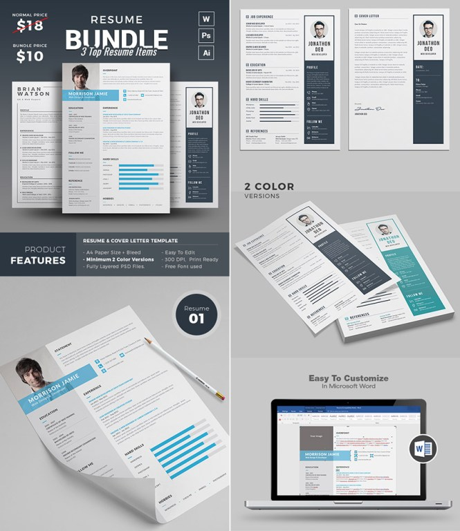 Professional Resume Templates For Microsoft Word Resume Sample