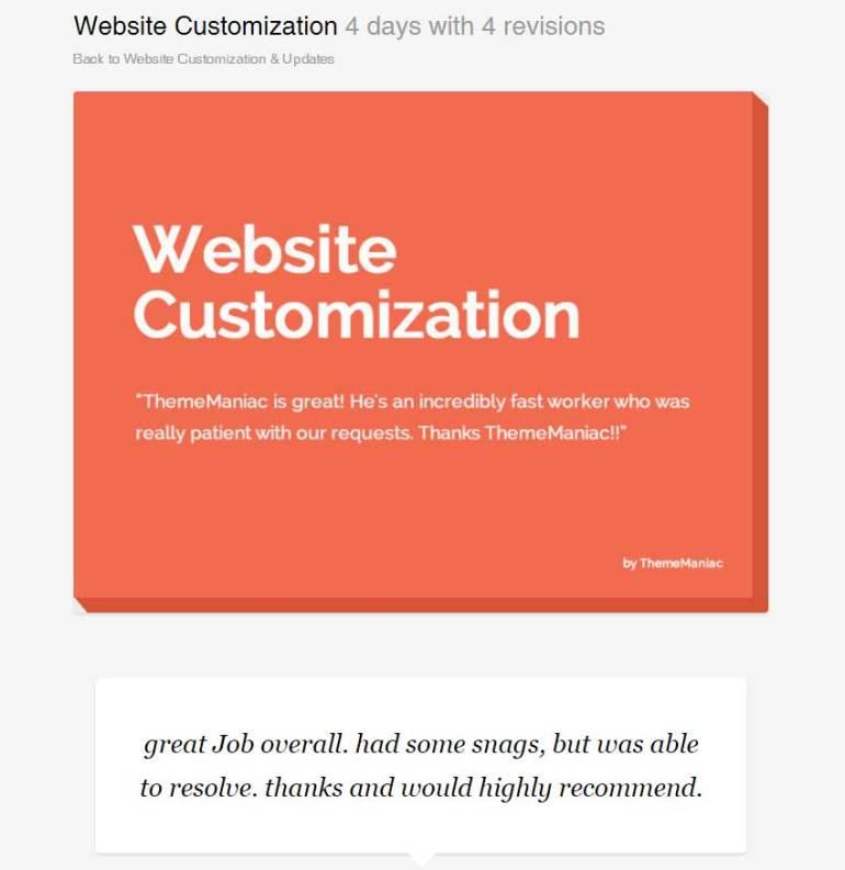 Website Customization by ThemeManiac