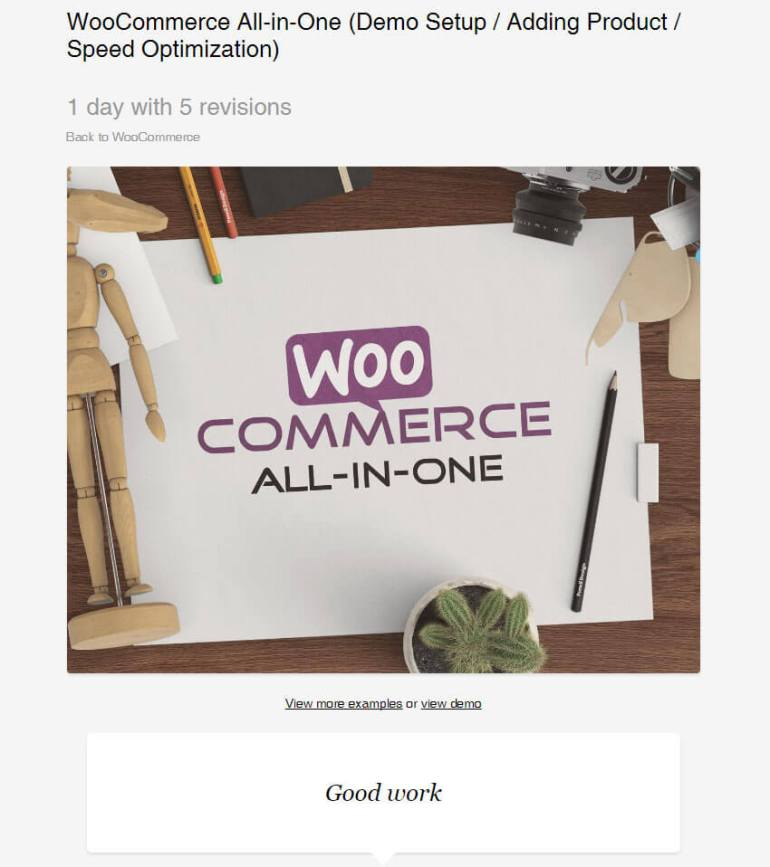 WooCommerse All-in-One