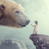 How to Create a Big Bear Photo Manipulation