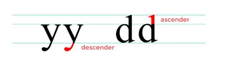 Ascender and Descender - Anatomy of a Letter