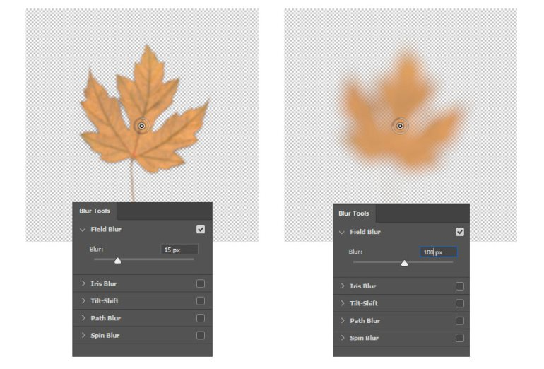 Blur Tools in Adobe Photoshop