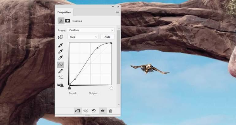 Photoshop Adjustment Layers  - hawk 2 curves 1