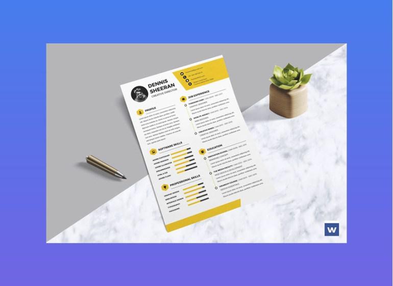 Bright Modern Resume