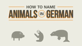 How To Name Animals In German