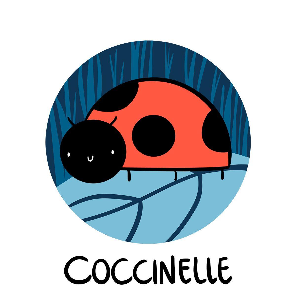 Image d'une coccinelle sur une feuille
