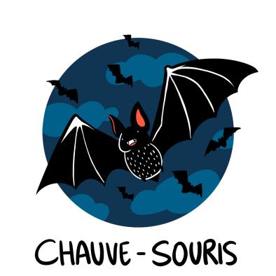 bat illustration, Chauve-souris