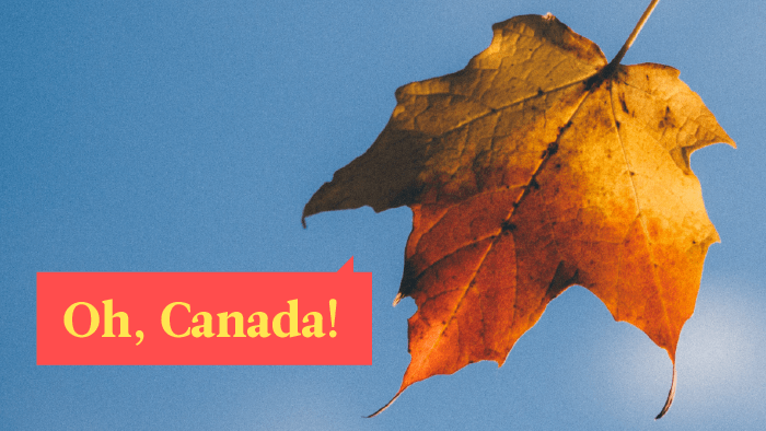 Which Are The Most Spoken Languages in Canada?