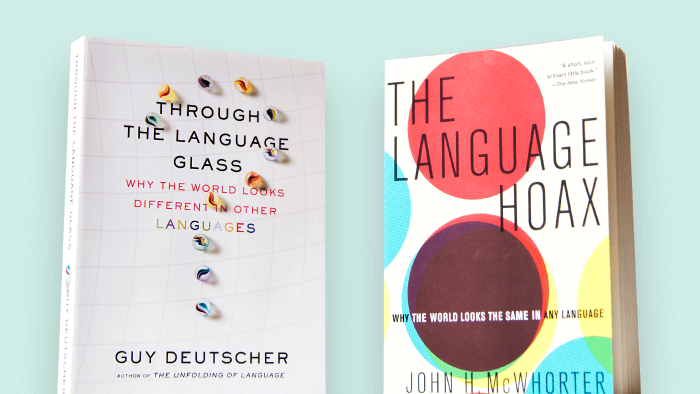 Does Our Language Change How We See The World?