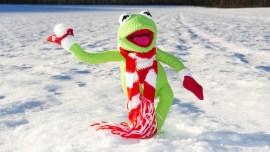 Le tour du monde des sports insolites à découvrir cet hiver
