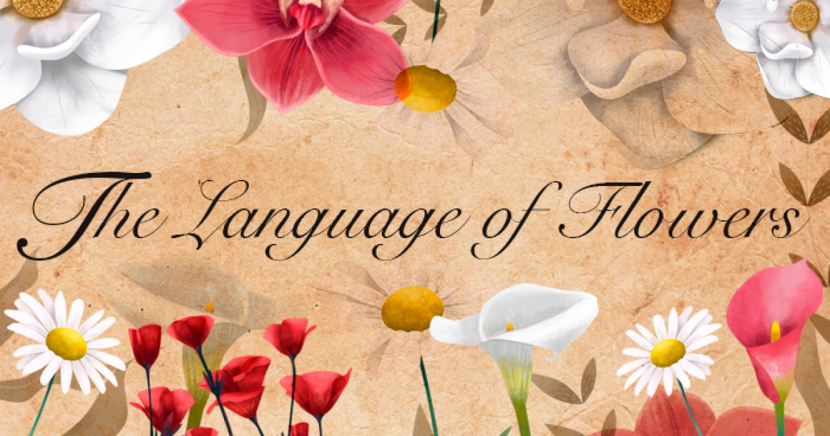 The Language Of Flowers What Do They Mean Babbel Magazine