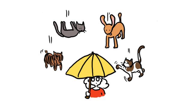 8 expressions en anglais illustrées