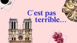 'Pas mal', 'pas mauvais', 'pas terrible': decifrando o pessimismo dos franceses em expressões corriqueiras