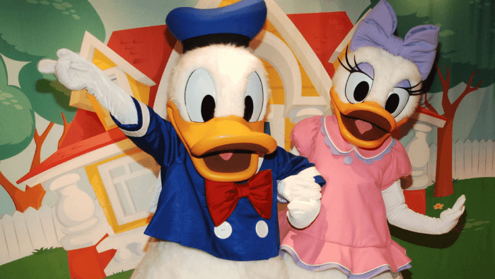 Donald and Daisy Duck characters