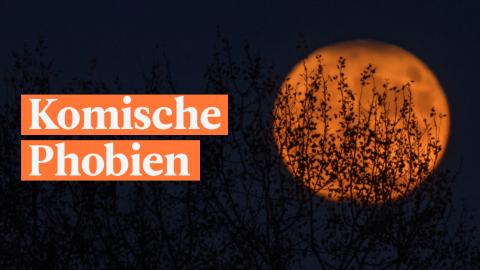 7 komische Phobien, von denen du noch nie etwas gehört hast – genau richtig zu Halloween