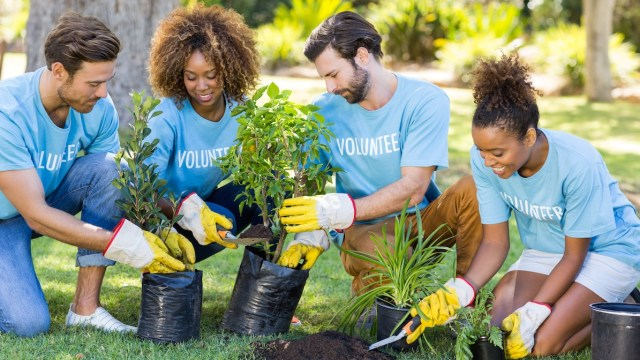 Earth Day 2021: 10 consigli in inglese per essere più green