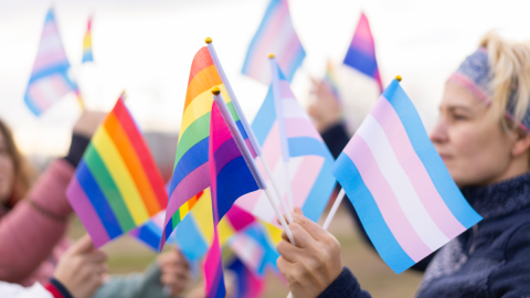 Linguagem LGBTQ+ e a Busca por Termos Inclusivos