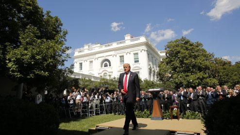 """Image result for white house rose garden"""""""