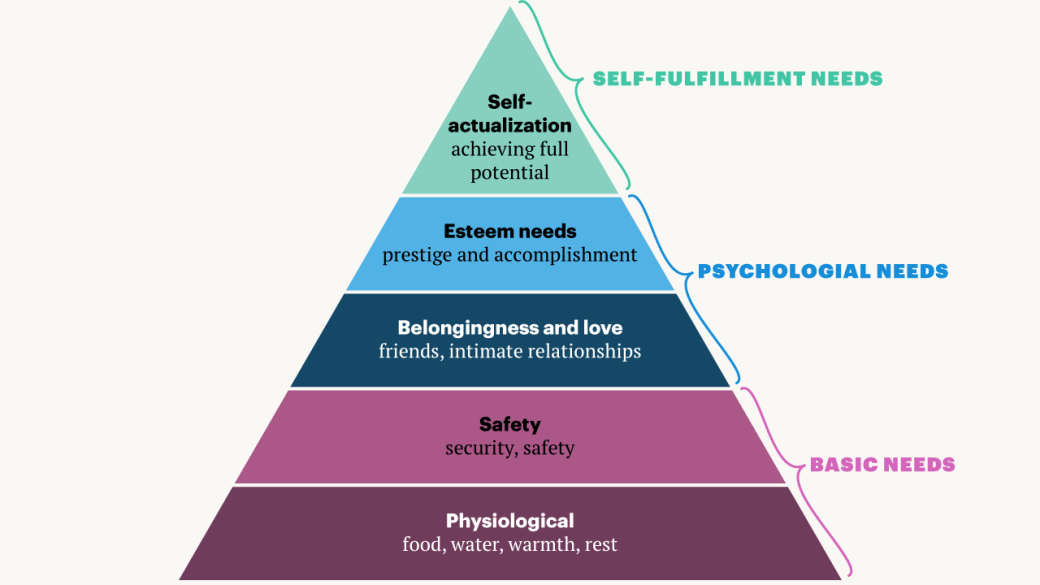 Image result for maslow's pyramid