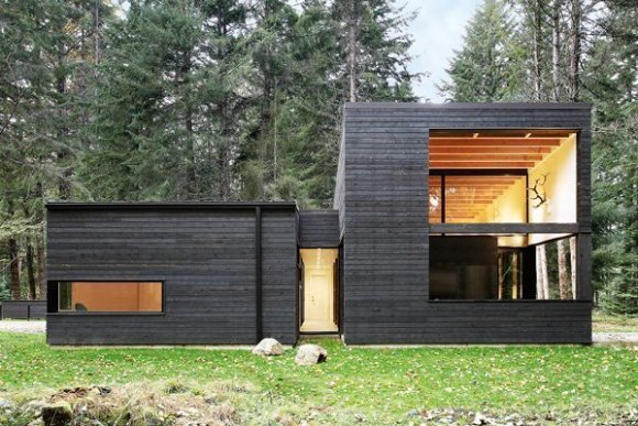 modern cedar siding home black stain