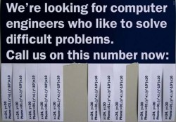 Looking for Coders