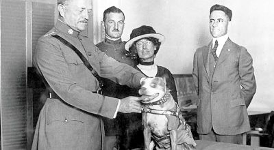 Sergeant Stubby: The Original Dog Of War