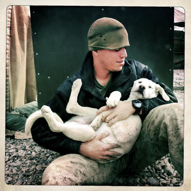 war-dogs-sofrep